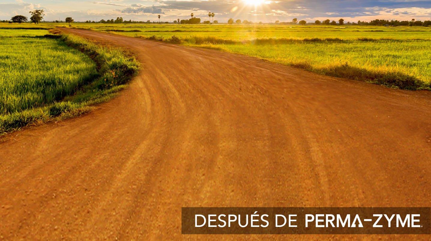 Perma-Zyme BKG Header_V03_Good Road@3x_SPANISH