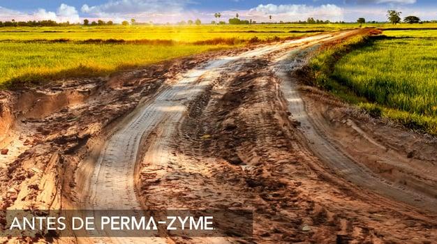 Perma-Zyme BKG Header_V03_Muddy Road@3x_SPANISH